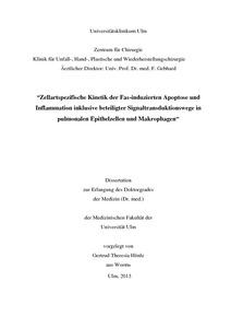 vts uni ulm dissertation Universittsklinikum ulm klinik fr psychosomatische medizin und psychotherapie rztlicher direktor: get dissertation - vts - universitt ulm description.