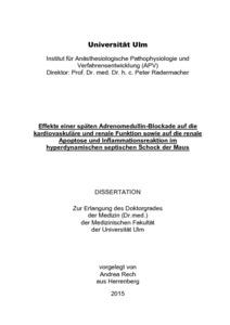 gang liu ulm dissertation